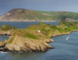 Devon Coast Cottages